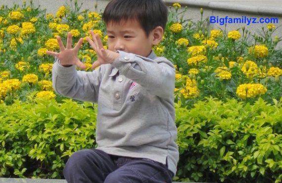 3至6歳「逐步法」提升專注及理解力
