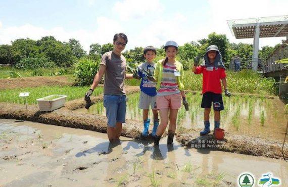 免費.親子農夫體驗活動@濕地公園