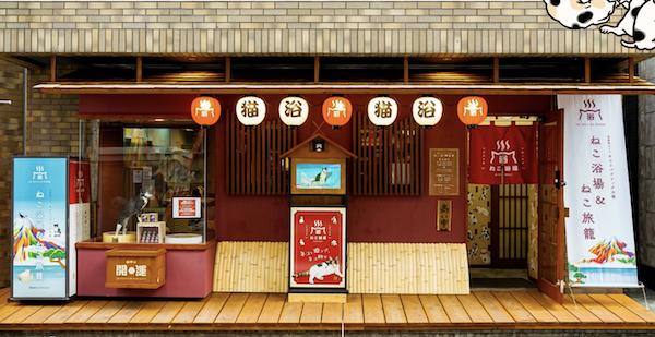 日本「貓貓旅館」‧好位+好玩
